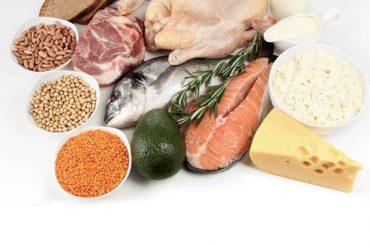 Proteine animali o vegetali?
